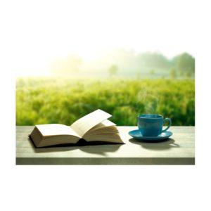 Buch-Abo - Jahresabo