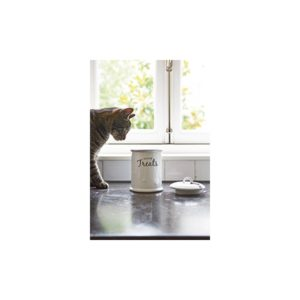 Kittie Treats Storage JAR