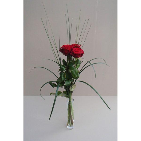 Rote Rose mit Grün