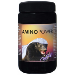 Amino Power von Robert Franz