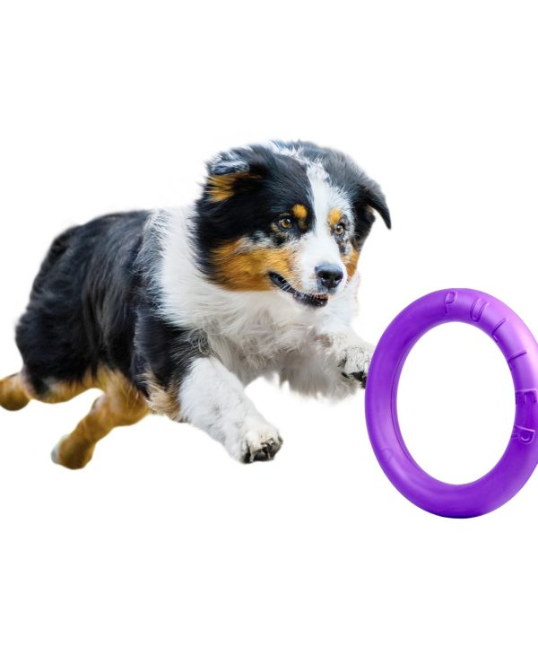 PULLER DOG FITNESS TOOL