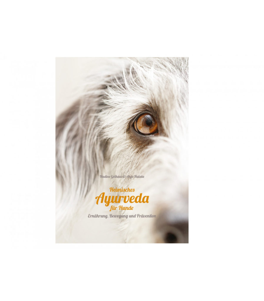 ayurveda für hunde