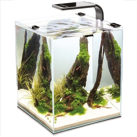 AquaEl Aquarium Shrimp Set 30